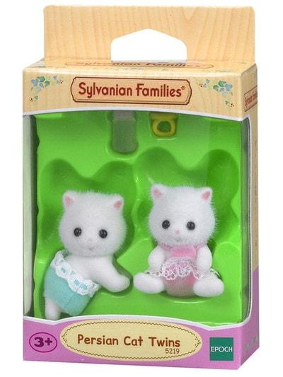 İran Kedisi İkiz Bebekleri - 4