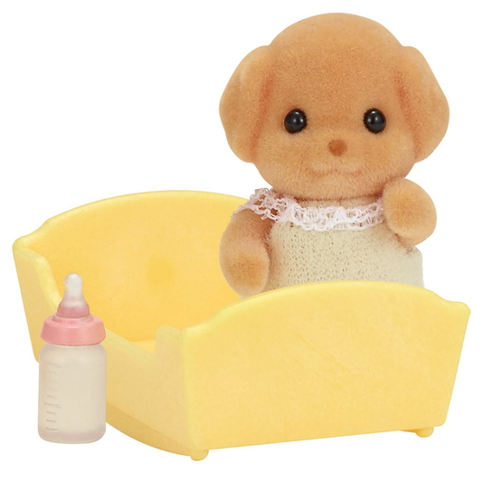 Toy-Pudel Baby - 3