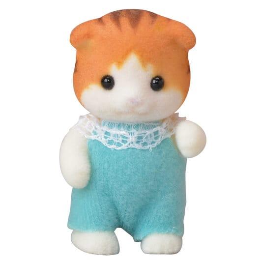 Ahornkatzen Baby - 5